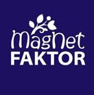 Magnet Faktor Effectivo Communications